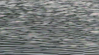 Pond Ripple Photo
