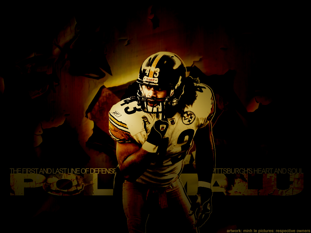 Steelers Wallpaper Hd Contact Troy43 Com The Official Website Of Troy Polamalu