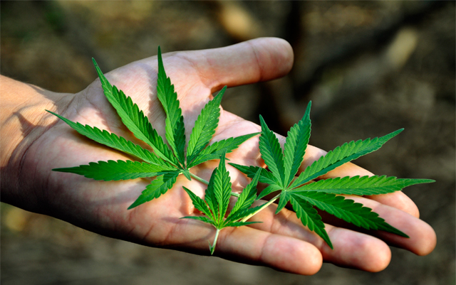 Can Federal Marijuana Law Reform Live Up to the Hype?