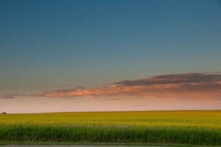 farms_crops_sunset-20080801-4