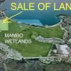 Mambo Land Sale