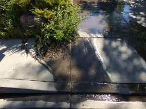 Water pours into the gutter from excessive watering in August 2014.