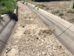 The Highland Ditch which supplies irrigation water to Rancho San Rafael Regional Park is dry in late summer 2014 because the Truckee River doesn't have enough water to support any diversions in the Truckee Meadows.