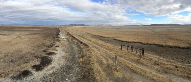 Carson Lake wetlands in Lahontan Valley mostly desiccated in April 2015.