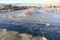 Truckee River downstream of the Mayberry foot bridge on 2/10/17.
