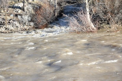 Hunter Creek high flows on 2/10/17 pour into the Truckee River at Mayberry foot bridge.