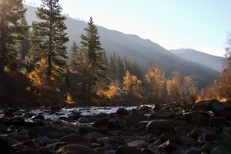 The Truckee River near Floriston, Nov 2014