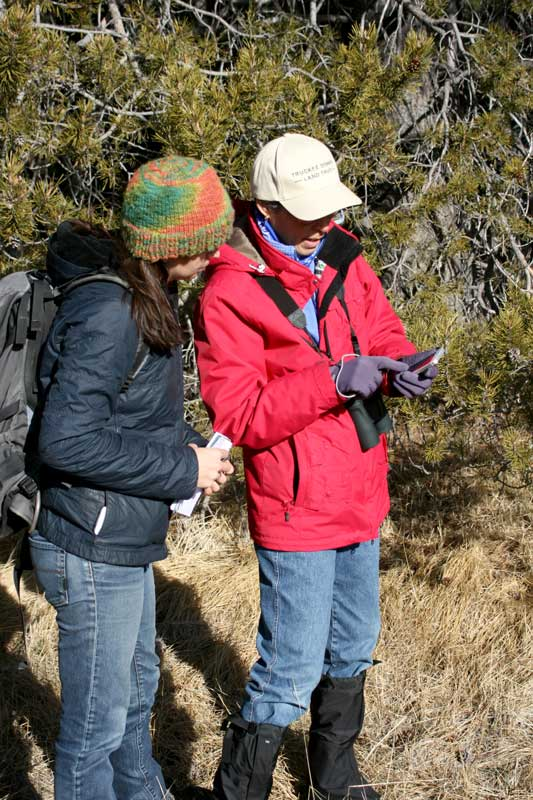 Janet Zipser Zipkin demonstrates how to submit an iNaturalist observation.
