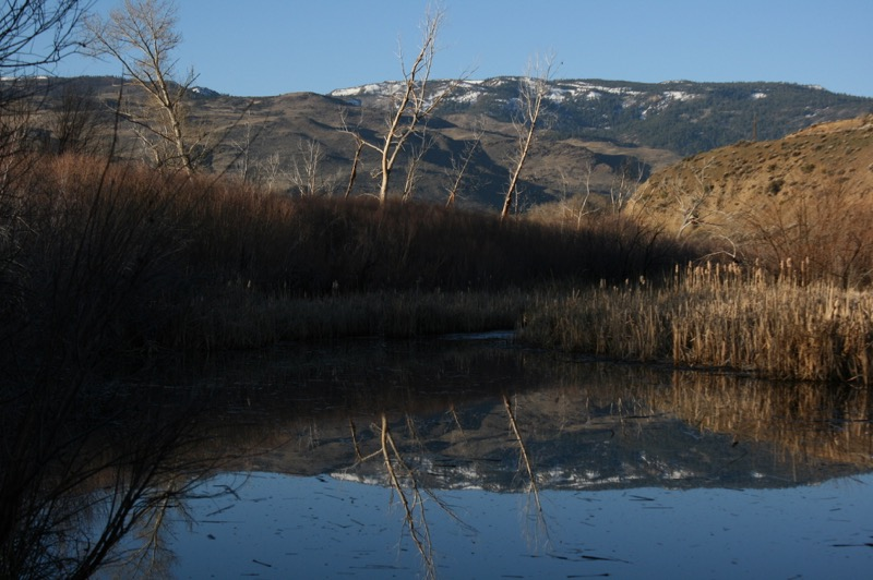 The pond at Oxbow Nature Study Area, Feb. 26, 2015.