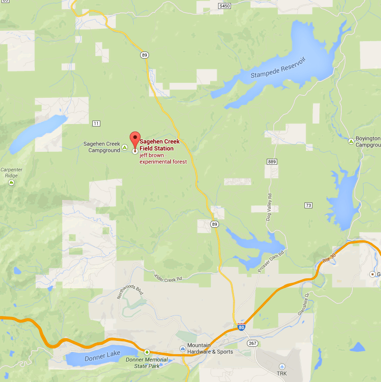 Sagehen Creek Field Station is located approximately 10 miles north of Truckee, CA.