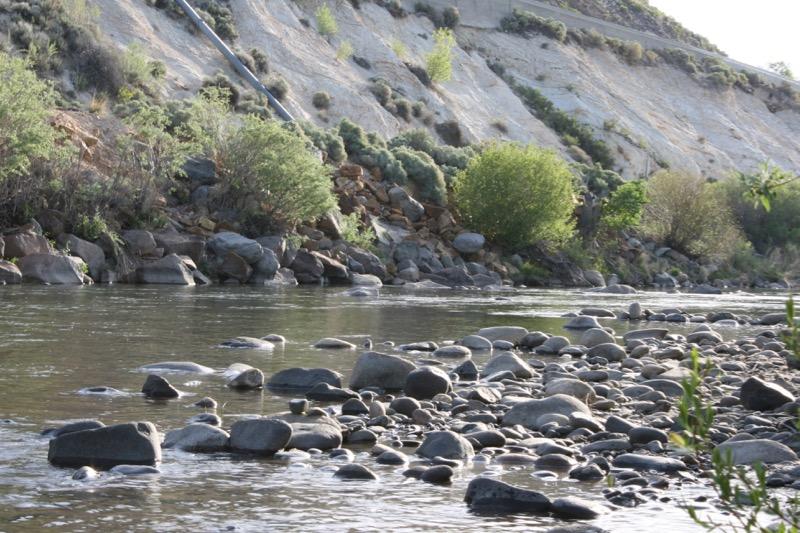 The Truckee River at Ambrose Park, Reno.  May 5, 2015.