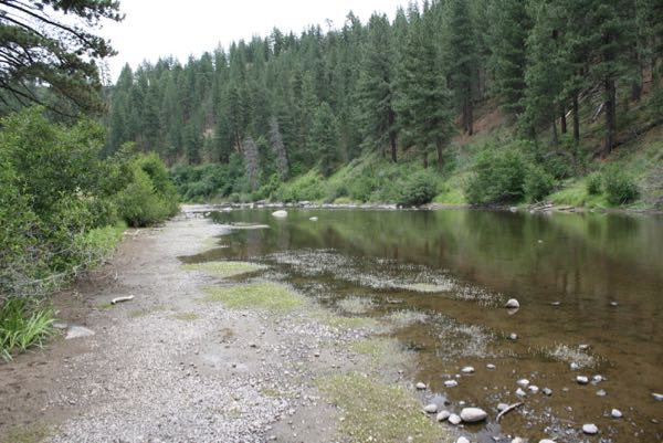 Not much water in this channel. Truckee River downstream from Prosser Creek, July 12, 2015.