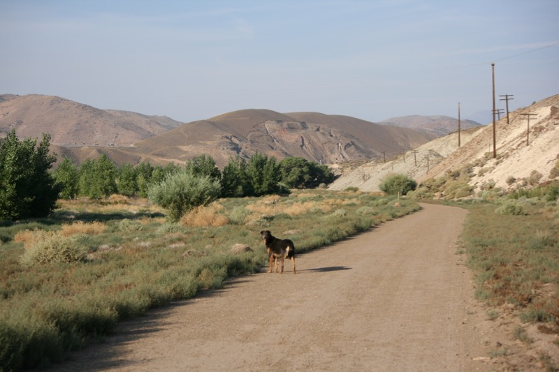 On the trail, Mustang Ranch Preserve. 6 Aug 2015.