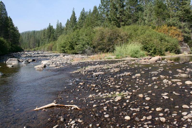 The Truckee RIver at the confluence with Donner Creek. Aug 23, 2015.