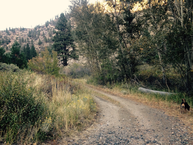 The Tahoe Pyramid Bikeway, near Fleish Dam. Oct 2, 2015.