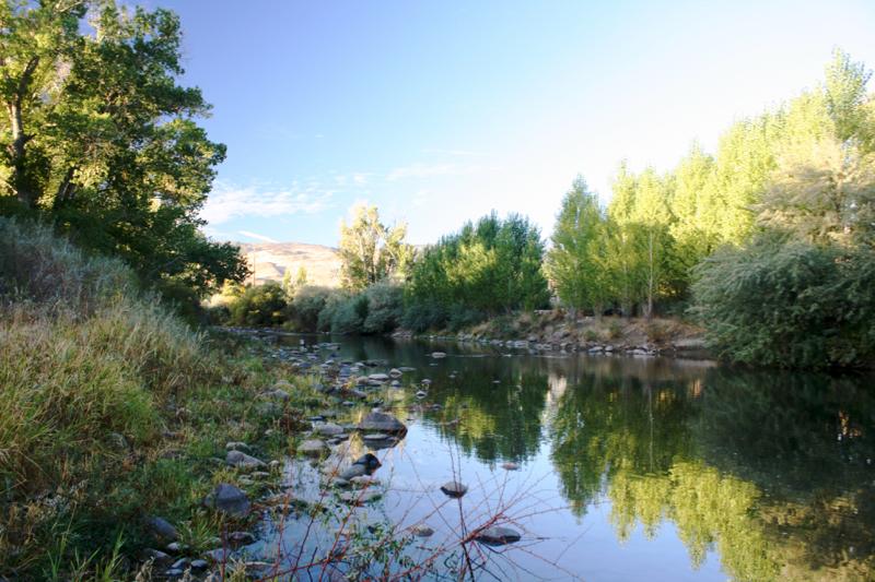Truckee River near Oxbow Park, Oct 9, 2015.