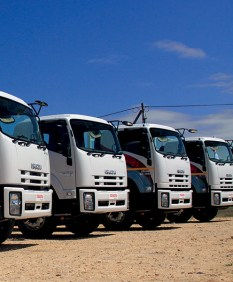 A fleet of Isuzu trucks