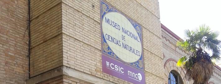 PLANES DE VERANO CON NIÑOS: VISITA AL MUSEO DE CIENCIAS NATURALES DE MADRID  Foto de %title