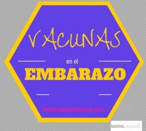 VACUNAS EN EL EMBARAZO  Foto de %title