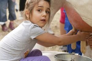 GANA UNA KIDDYSBOX: ¡FELIZ DÍA!  Foto de %title