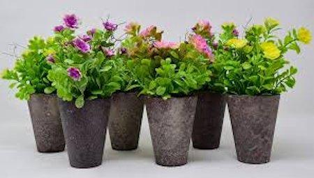 Estimular la floración