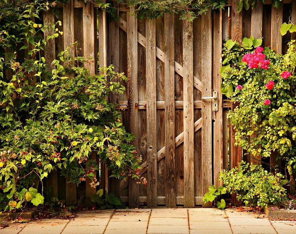 Comment Cloturer Son Jardin 5 idées pour bien aménager son jardin !