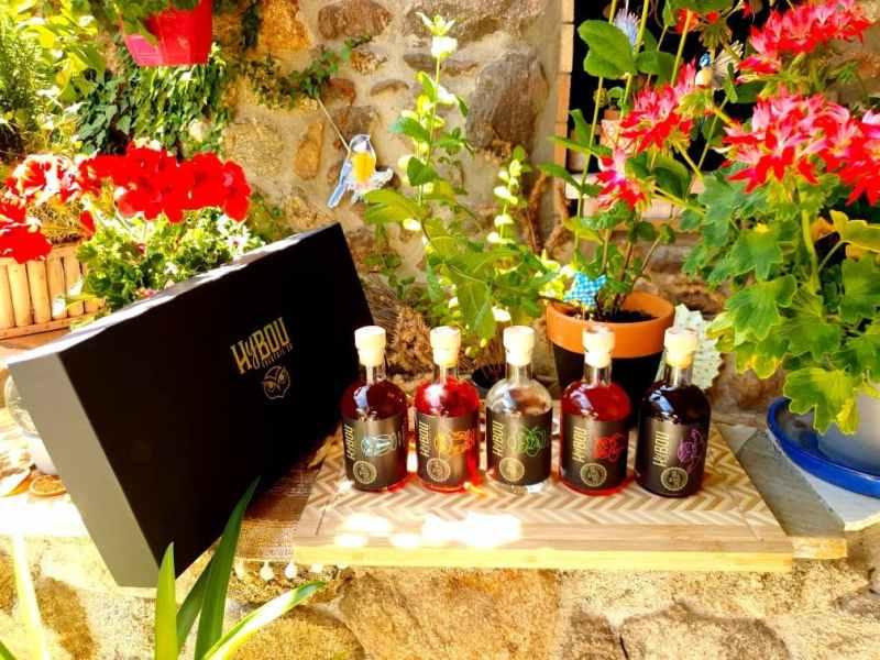 HyBOU, l'art de la mixologie à domicile