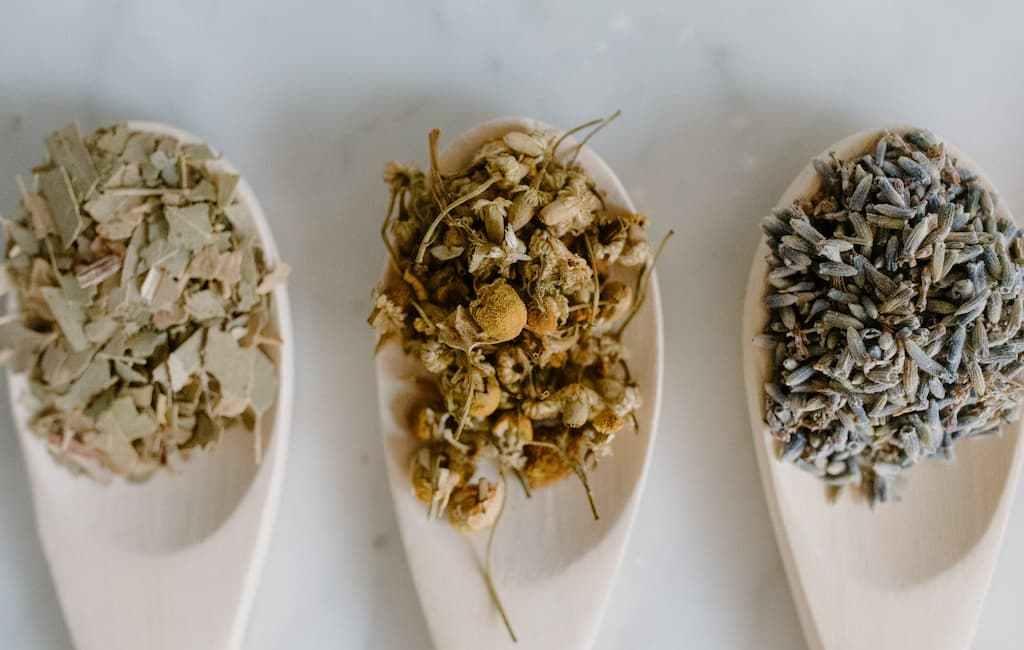 Comment l'herboristerie vient à la rescousse de notre santé