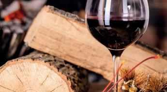 Carrefour Foire aux vins Automne 2021 les vins rouges
