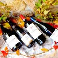 4 vins d'automne