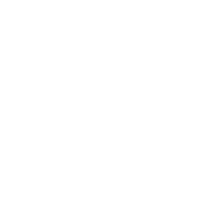 white institute for equity centered coaching logo