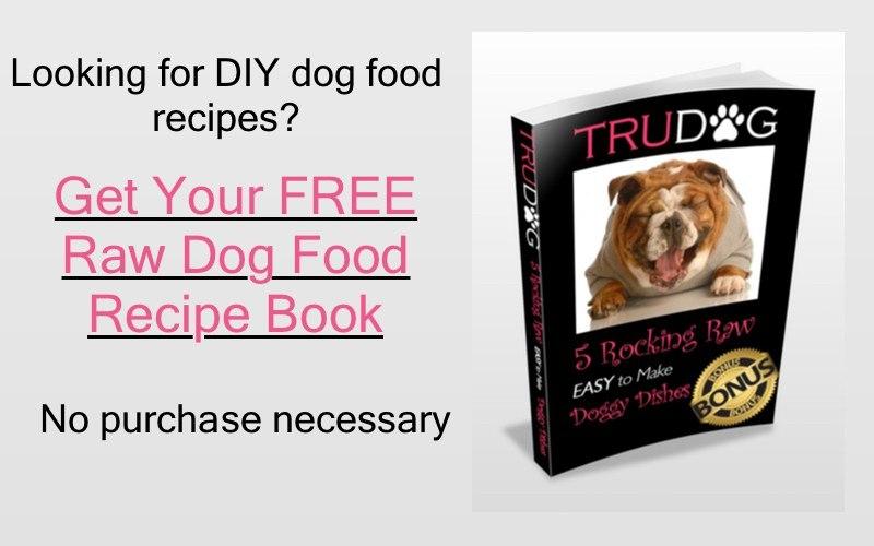 Natural Organic Dog Food Recipes