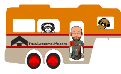True Awesome Life logo