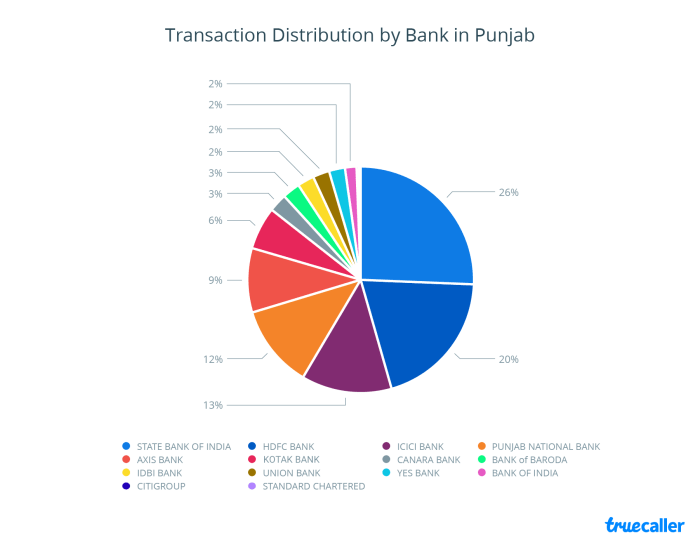 3. Transaction Distribution - Punjab