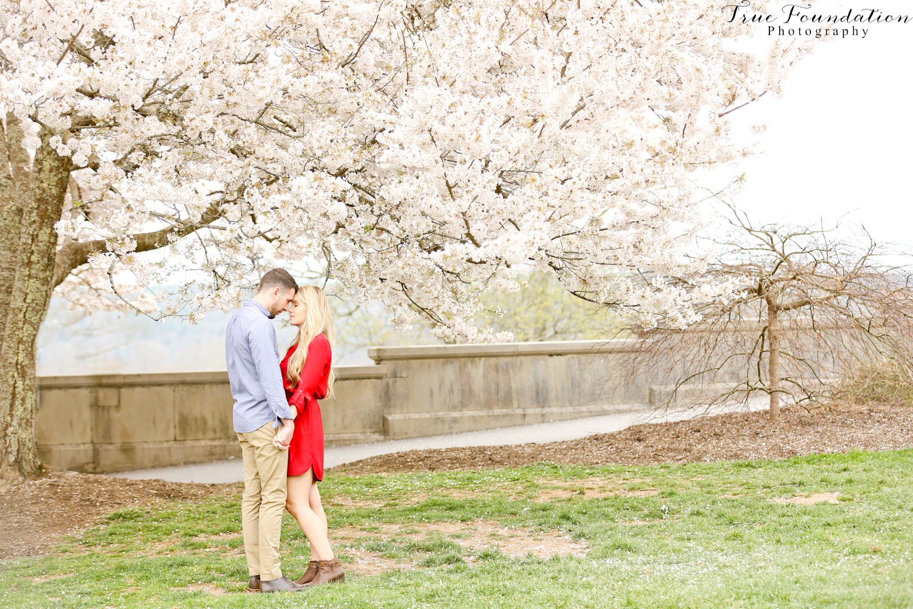 Hendersonville Nc Engagement Wedding Photography Photo