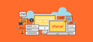cpanel licences