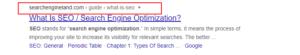 seo #1 result on google