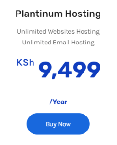 cost to host a website in Kenya