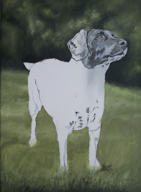 Pet Portraits in acrylic in Progress - Judy Step 2
