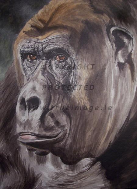 Gorilla wildlife art