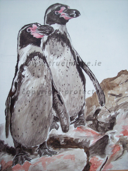 Wildlife portrait of Humboldt Penguins in acrylic