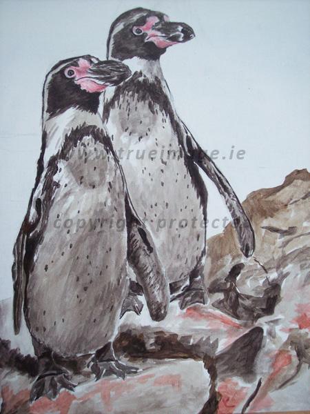 Wildlife portrait of Humboldt Penguins in acrylic