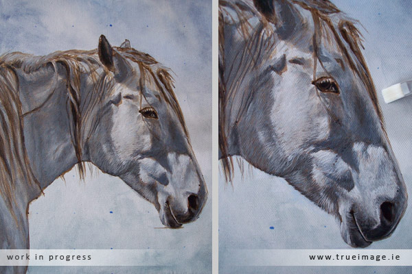 horse painting in acrylic - progress image 4