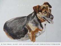 dog portrait painting - work in progress 2