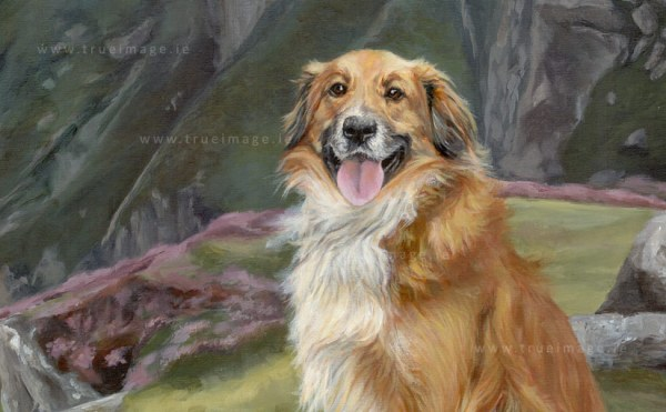 collie-painting