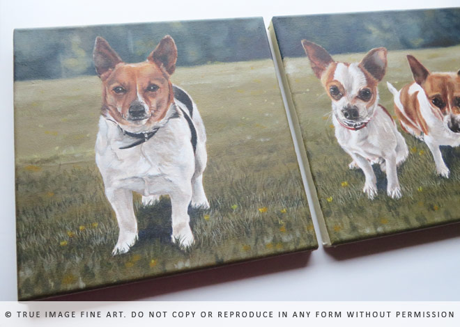 jack russell chihuahua paintings