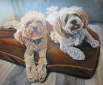 last detailing of dog portrait