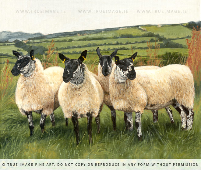 painting of four sheep