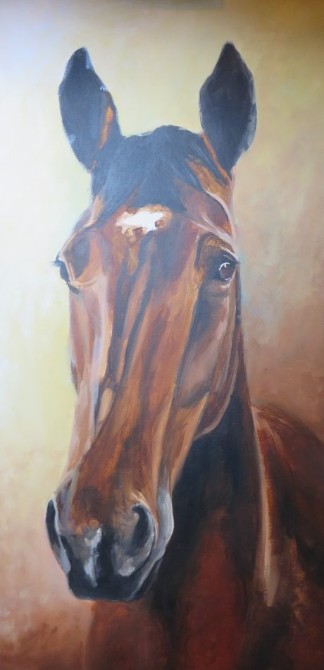 horse portrait in progress 4