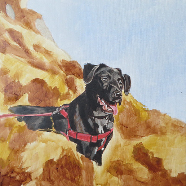 labrador painting step 3